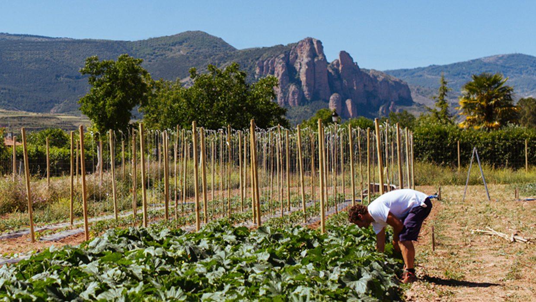 La Huerta ecológica Riojana