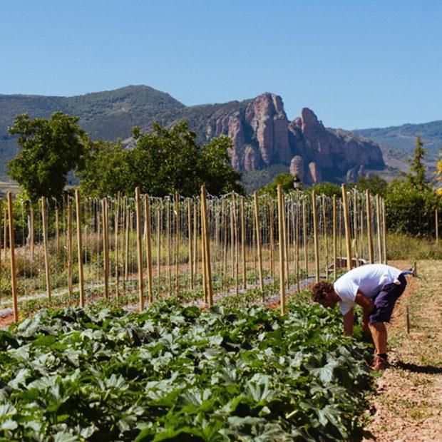 La Huerta Riojana